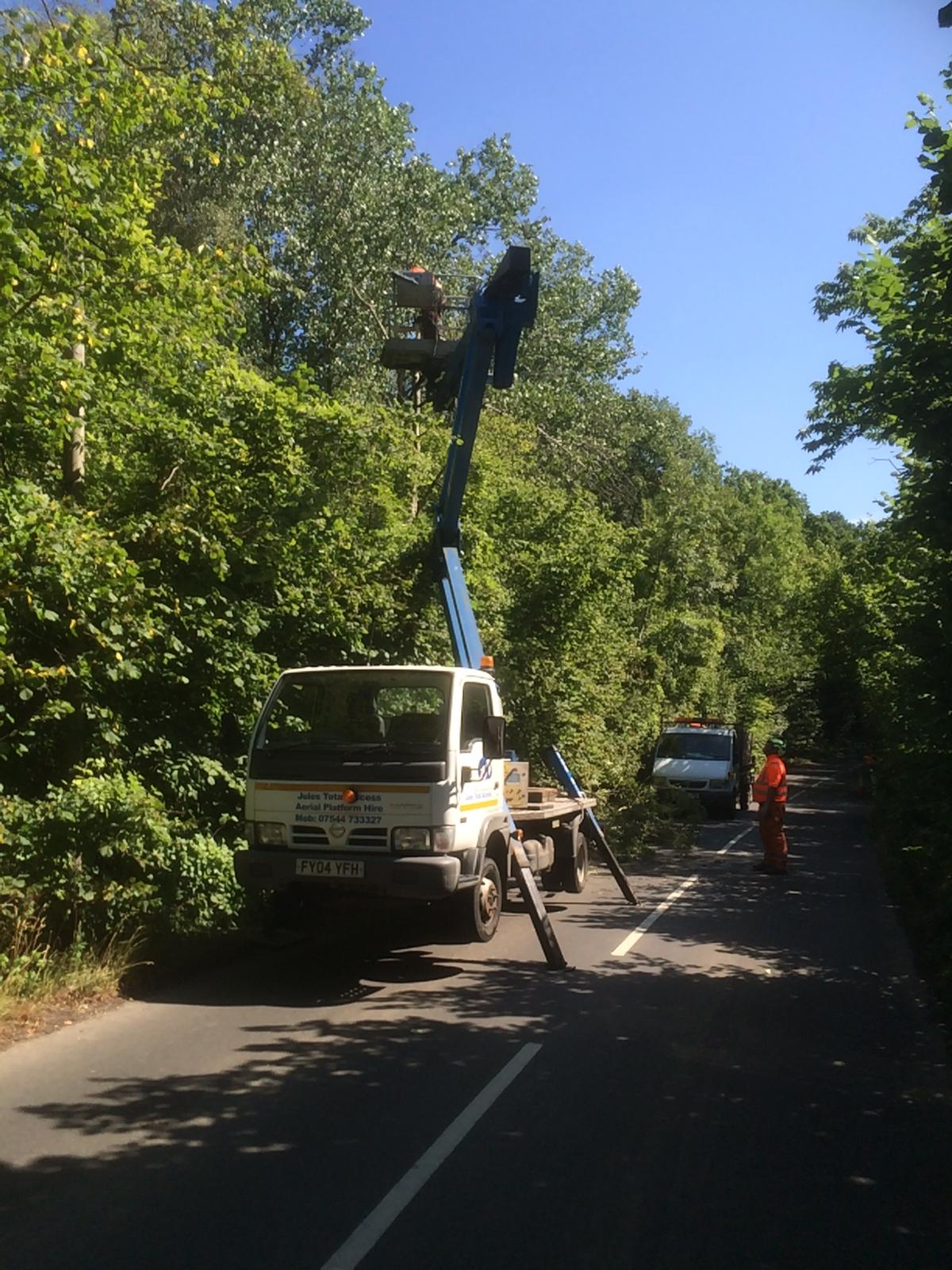 Cherry Picker to RJC Redwood
